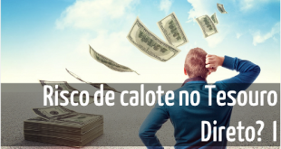 Tesouro Direto - divida publica brasileira - Corro o risco de perder meu dinheiro ao investir no Tesouro DIreto - Seu Guia de Investimentos - destacada